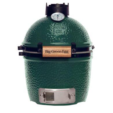 big green egg mini standaard